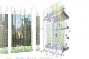 Harnessing Urban Energies FXFOWLE Architects