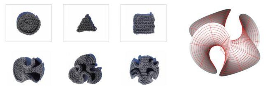 Figure 22 (Left): Examples of generative process in crochet. The base forms are transfigured into hyperbolic versions. Figure 23 (Right): Hyperbolic Enneper surface in Rhino/ Grasshopper3d.