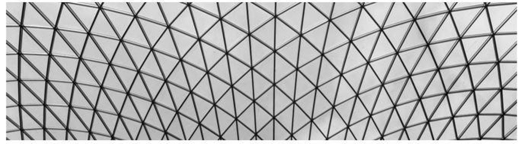 Figure 4: Diagrid skylight canopy at the British Museum in London. This triangulated grid pattern has been found naturally in plants and animals and in the textiles of the early humans.